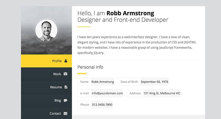 theme-wordpress-cv-1