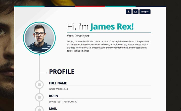 theme-wordpress-cv-3