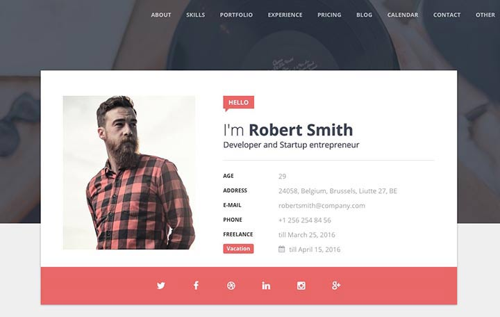 theme-wordpress-cv-4