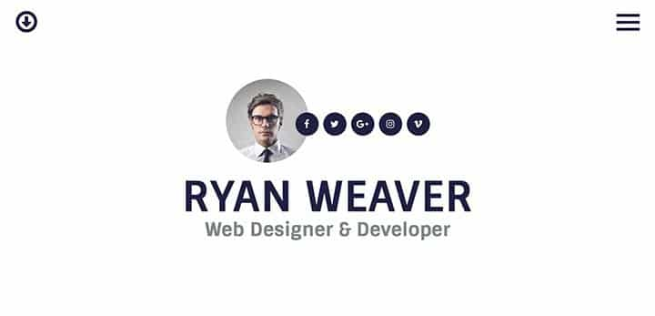 theme-wordpress-cv-8