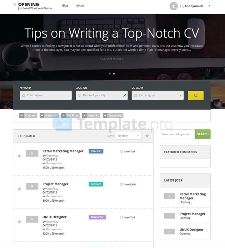 theme wordpress job board 10